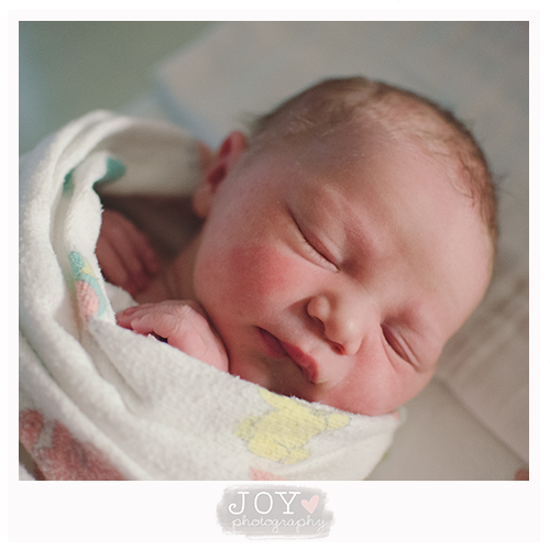 just arrived newborn fresh 48 joy photography toledo ohio michigan perrysburg adrian baby burrito