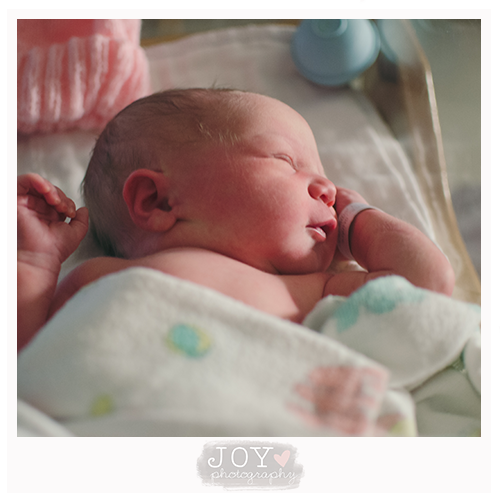 just arrived newborn fresh 48 joy photography toledo ohio michigan perrysburg adrian