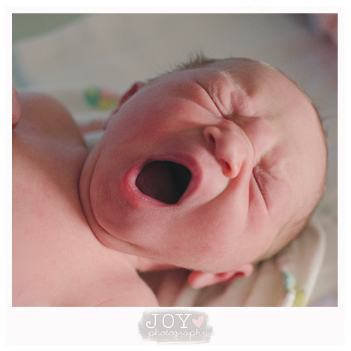 just arrived newborn fresh 48 joy photography toledo ohio michigan