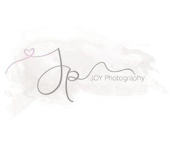 Mid Michigan/Central MI  Newborn & Baby Photographer logo
